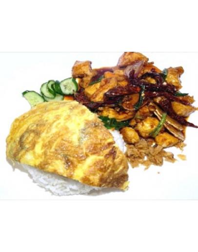 Kung Pao Chicken / Fish Rice 宮保鷄丁 / 魚片飯